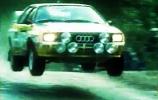 Michele Mouton - greita moteris