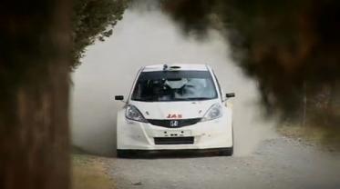 Honda Jazz Rally
